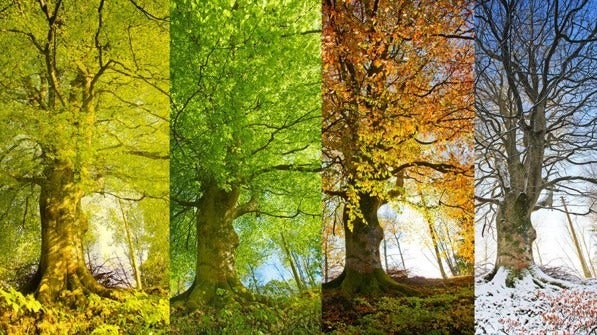 Body's Natural Seasons